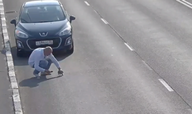 Man Risk his life to Save a Kitten from Highway